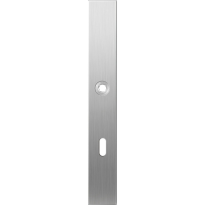 Long backplate XL GPF1100.75R lock 72 right handed satin stainless steel