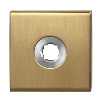 Rose GPF1100.02P4 50x50x8mm PVD brass satin